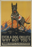 Even a Dog Enlists, Why Not You Giclée