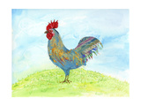 Meadow Rooster