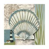 Seaside Shell II