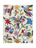 Otomi Embroidery II
