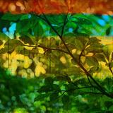 Abstract Leaf Study I