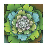Fractal Blooms I