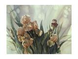 Hadfield Irises II