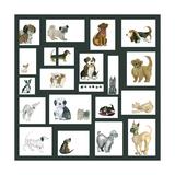 Doggie Grid