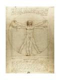 Vitruvian Man (Canon of Proportions) Giclée par Leonardo Da Vinci