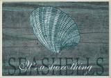 Seashells It's a Shore Thing Wall Plaque