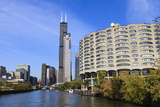 The South Branch of the Chicago River