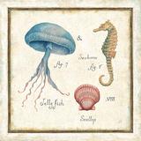 Oceanography III Reproduction d'art par Daphne Brissonnet