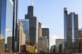Skyscrapers  Chicago  Illinois  United States of America  North America