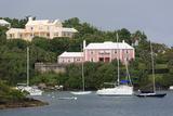 Houses in Pitts Bay  Hamilton City  Pembroke Parish  Bermuda  Central America