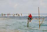 Stilt Fishermen  Dalawella  Sri Lanka  Indian Ocean  Asia