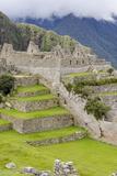 Machu Picchu  UNESCO World Heritage Site  Near Aguas Calientes  Peru  South America