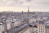 The City of Paris as Seen from Notre Dame Cathedral  Paris  France  Europe