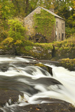Cenarth Waterfalls  Carmarthenshire  Wales  United Kingdom  Europe