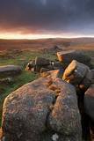 Moorland View at Belstone with Granite Outcrops  Near Okehampton  Dartmoor Np  Devon  England  UK