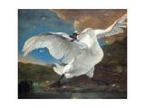The Threatened Swan Giclée par Jan Asselijn