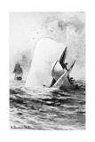 Illustration of the White Whale Giclée par A. Burnham Shute