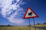 Warthog Crossing Sign