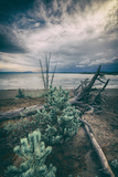 Moody Lakeside Storm  Yellowstone