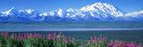 Mountains and Lake Denali National Park Ak USA Papier Photo
