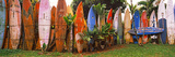 Arranged Surfboards  Maui  Hawaii  USA