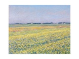 The Plain of Gennevilliers  Yellow Fields