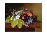 A Bouquet of Apple and Cherry Blossoms  and Primula