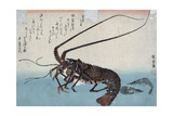 Shrimp and Lobster Giclée par Ando Hiroshige