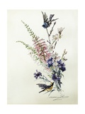 A Study of Heather  Cornflower  and Blossom