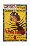 La Femme Araignee Poster