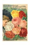 Our New Guide to Rose Culture  1899 Catalog Cover for the Dingee and Conard Co