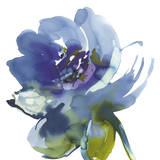 Blue Wash II