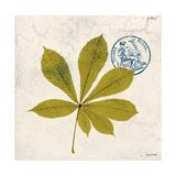 Jade Forest Leaf 3