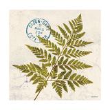 Jade Forest Leaf 1
