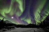 Aurora Borealis VIII