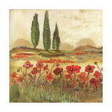 Poppy Field II
