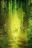 Green Forest 1