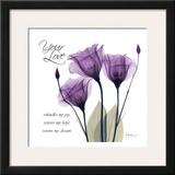 Your Love  Purple Tulip