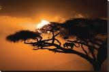 Ciel africain Tableau sur toile