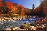 Ruisseau à l'automne Tableau sur toile