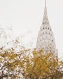 Fall in the City II