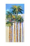 Shadow Palms I