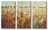 Field of Spring Flowers II Tableau multi toiles par Tim O'toole