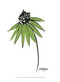 Graphic Cone Flower I