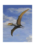 Dsungaripterus Weii  a Pterosaur That from the Early Cretaceous Period