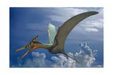 Ludodactylus Sibbicki  a Pterosaur from the Lower Cretaceous Period