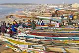 Kayar Fishing Harbour  the Biggest Fishing Harbour in Senegal  Senegal  West Africa  Africa