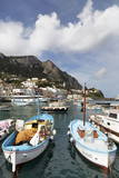 Traditional Fishing Boats in Marina Grande in Capri  Campania  Italy  Mediterranean  Europe
