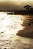 Lighthouse State Beach  Santa Cruz  California  United States of America  North America