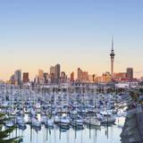 Westhaven Marina and City Skyline Illuminated at Sunset